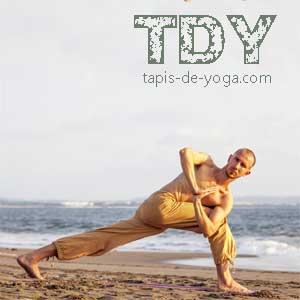 Yoga : tout savoir & guide yoga