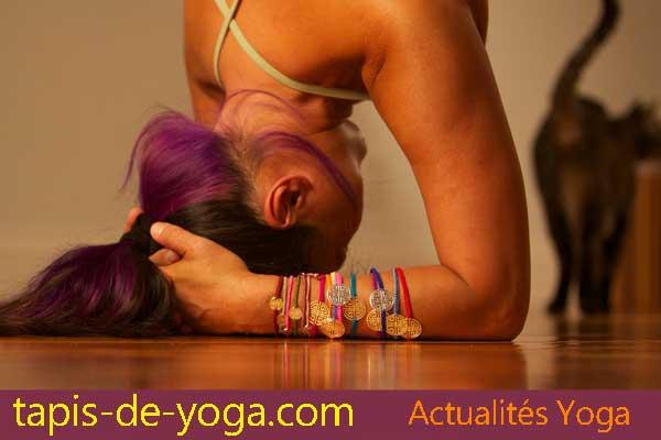 yoga accessoires divers quelles fonctions ?